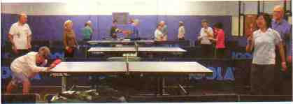 Social Table Tennis